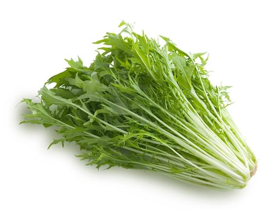 水菜の消費期限と保存方法 水菜の消費期限と保存方法 水菜の保存方法、消費期限 水菜の消費期限と保